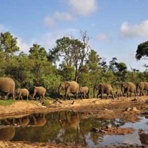 SUD AFRICA, I COLORI DELL'ARCOBALENO